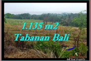 Affordable PROPERTY LAND FOR SALE IN TABANAN TJTB253