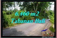 Affordable PROPERTY 6,460 m2 LAND SALE IN TABANAN BALI TJTB256