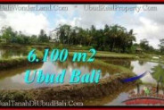Affordable LAND FOR SALE IN UBUD TJUB547