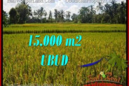 Magnificent PROPERTY Ubud Tegalalang 15,000 m2 LAND FOR SALE TJUB551