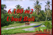 Ubud Tegalalang BALI LAND FOR SALE TJUB552