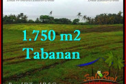 Beautiful PROPERTY TABANAN LAND FOR SALE TJTB262