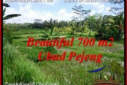 Exotic 700 m2 LAND IN UBUD BALI FOR SALE TJUB534