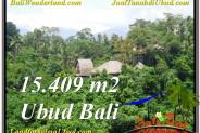 Affordable 15,490 m2 LAND SALE IN UBUD TJUB568
