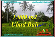 FOR SALE Exotic 1,000 m2 LAND IN UBUD TJUB570