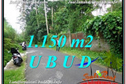 FOR SALE Exotic 1,150 m2 LAND IN UBUD TJUB576