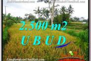 Magnificent 2,500 m2 LAND SALE IN UBUD BALI TJUB577