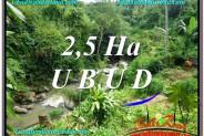 FOR SALE Beautiful 26,000 m2 LAND IN UBUD BALI TJUB579