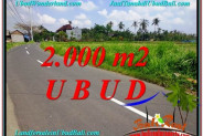 Beautiful 2,000 m2 LAND IN UBUD BALI FOR SALE TJUB580