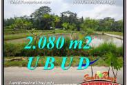 FOR SALE Affordable 2,080 m2 LAND IN UBUD TJUB582