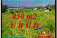 Magnificent PROPERTY Ubud Pejeng 850 m2 LAND FOR SALE TJUB583