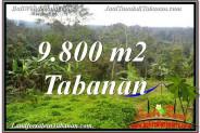 Magnificent PROPERTY TABANAN BALI LAND FOR SALE TJTB350