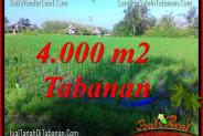 Exotic PROPERTY LAND SALE IN Tabanan Selemadeg TJTB352