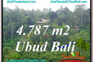 Beautiful PROPERTY Ubud Tampak Siring 4,787 m2 LAND FOR SALE TJUB603
