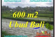 Affordable LAND SALE IN Ubud Tegalalang BALI TJUB607