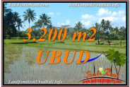 FOR SALE Beautiful LAND IN Ubud Payangan BALI TJUB628